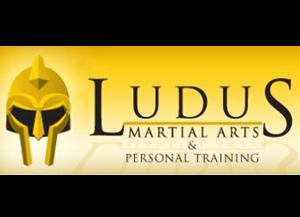 ludus-martial-arts-and-personal-traing-jacksonville